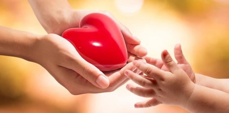 Женские руки передают красное сердце в детские ручки