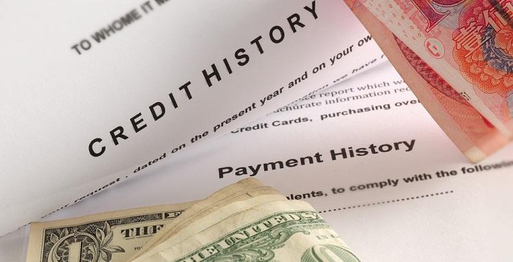 Досье с кредитной историей на заемщика